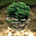 Umwelttag natur conservation