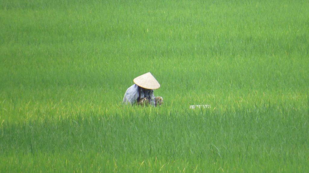 Tag der Landfrauen