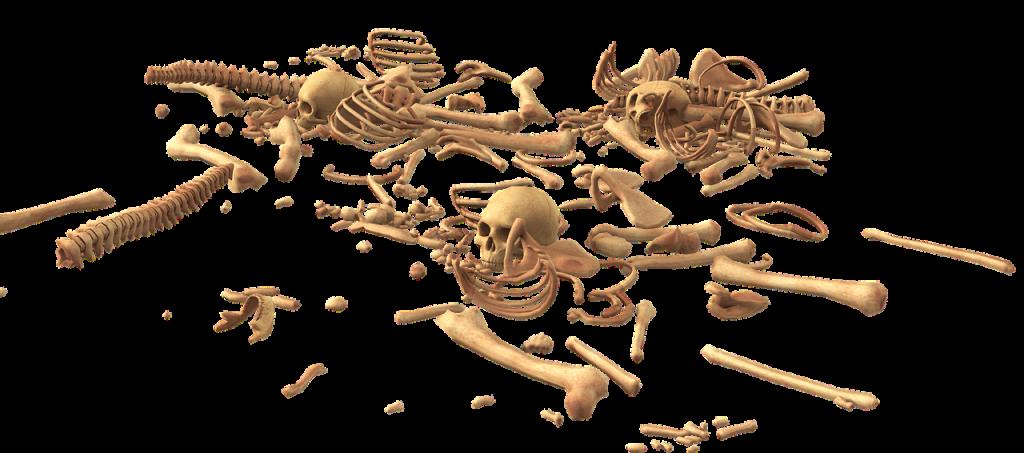 Osteoporose-Tag