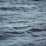 Umwelttag Weltwassertag