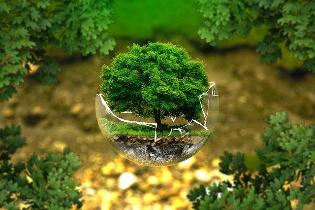 Umweltbildungstag