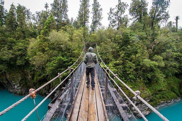 Tag des Baumes Neuseeland
