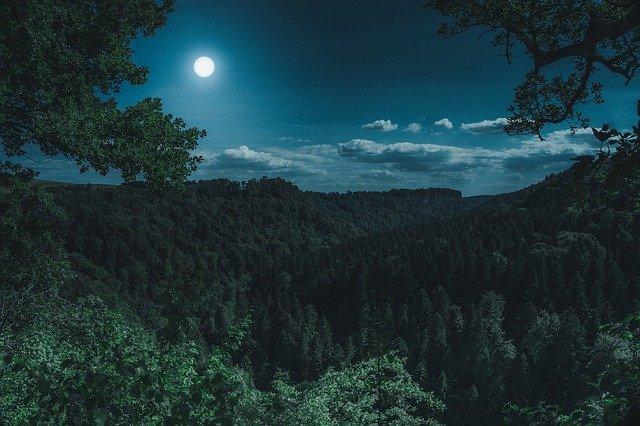 Sternschnuppennacht.